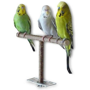 Pet Parrot Cage Perch Bird Stand Natural Wood Training Grinding Chew Stick Toys