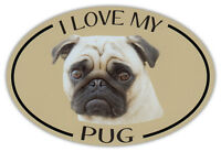 Oval Dog Breed Picture Car Magnet - I Love My Pug - Bumper Sticker Decal