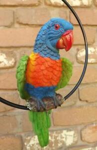HANGING  PARROT RAINBOW LORIKEET BIRD RESIN IN METAL RING GARDEN STATUE FIGURE