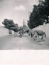 TANGER c. 1950 - Minaret Rue Anes Maroc - M36