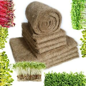 100% Natural Growing Mat Media Microgreens Wheatgrass Sprout Sprouting Seeds