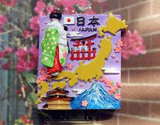 Japan Tourist Travel Souvenir 3D Resin Refrigerator Magnet Craft GIFT IDEA