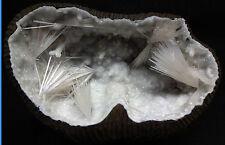Spécimen Géode de Quartz avec inclusions de Natrolite /312 grammes