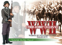 "Dragon Models Cyber-Hobby 1/6 Scale 12"" WWII German Wehrmacht Walter Monch 70349"