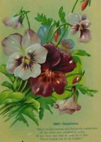 Pansy Thoughtfulness Poem Written On Unposted Divided Back Vintage Postcard