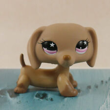 IN HAND Littlest pet shop CAT DOG Chocolate Dachshund LPS Figures collection