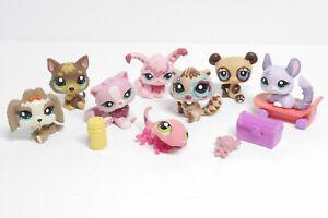LPS Littlest Pet Shop 8X Lot w/ Skateboard Dog Cats Gecko More!