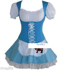 Ladies/Girls Dorothy Wizard of Oz Storybook Fairytale Costume - size 10/12