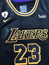 LeBron James NEW Mens Los Angeles Lakers Black Mamba Edition Jersey