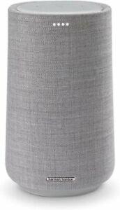 Harman Kardon Citation 100 (Grey) Wireless Speaker