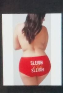 LANE BRYANT CACIQUE 18/20 BOYSHORT panty Christmas Sleigh Sista