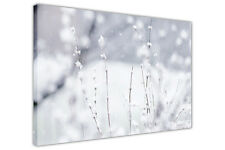 WINTER FLOWERS CANVAS WALL ART PRINTS HOME DECORATION PHOTOS FLORAL PICTURES