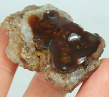 145.9Ct Natural Mexican Multi-Colored Fire Agate Facet Rough YFM2023