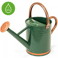 1-Gallon Galvanized Steel Watering Can w/ O-Ring, Top Handle, gardening