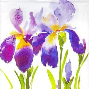 3 x Single SMALL Paper Napkins Decoupage Purple Blue Painted Iris Flowers S024