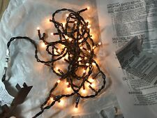 50 SEED STRING LIGHTS Clear Bulb Rice - Brown Cord Indoor Use Only Crafts, +