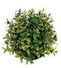 Victorian Trading Co Boxwood Topiary Ball Faux Plant