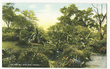 London - Hyde Park, The Palm Dell - 1900's Star Series Postcard