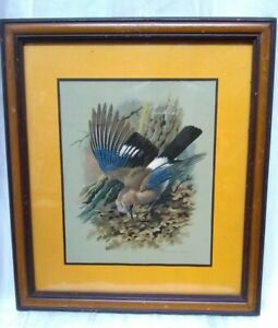 "RARE•Vtg•Wild Life•Bird•Basil Ede•Two Toned•Solid Wood•Padded• UNFRAMED•17""x15"