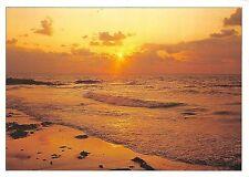 B50002 Dans le soleil couchant les vauges deversent sur le sable des lar  france