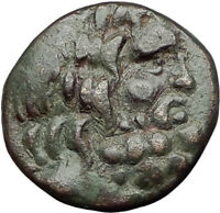 APAMEIA in PHRYGIA 88BC Authentic Ancient Greek Coin ZEUS ARTEMIS Statue i64965