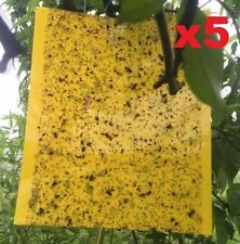 5 Sheets Yellow Sticky Insect Traps Houseplant Whitefly Aphid Gnats Hot Sales S