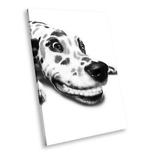 A001 Dalmatian Black White Animal Portrait Canvas Picture Print Small Wall Art