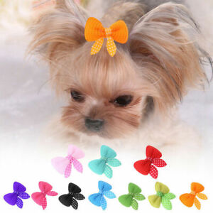 10pcs pet Dog Cat Puppy Hair Clips Hair Bow Tie Bowknot Pet Grooming Hairpi