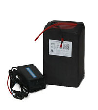 48V 15Ah Lithium LiFePO4 Battery Pack Power for Electric Bike Motor Kit < 500W