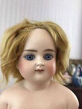 "Antique Bisque Shoulder Head ABG 639 German French Market Doll 16"""