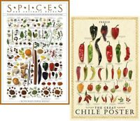 Kitchen Spices Wall Art THE GREAT CHILE POSTER 2-Poster Set Fresco and Seco