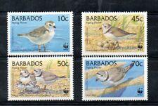 BARBADOS,1999, WWF, BIRDS,4v..MNH