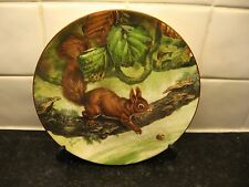 THE SQUIRREL    PLATE   - RIVER RESCUE -    WEDGWOOD