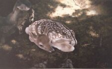 """Angelos Panayiotou """"FAWN"""" Small Open Edition Giclee Pigment Print - Greek Artist"""