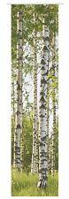 Flächenvorhang halbtransparent Tree Birke Baum Digitaldruck grün 198862