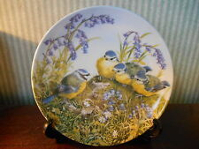 Royal Worcester plate for Danbury Mint , A Tasty Morsel , Happy Families