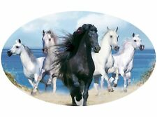Motor home Caravan Camper Horse box Horses Sticker Mural Decal Graphic mh1-40