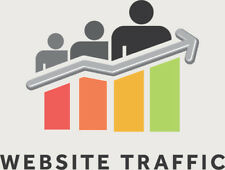 5000 Laser Targeted Visitors To Your Website