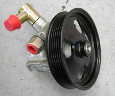 HOLDEN Power Steering Pump Conversion VE Commodore WM Statesman V8 8cl + FILTER