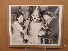 The Wizard of Oz 8x10 photo movie stills print #3014