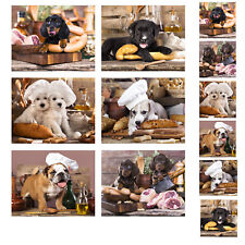 Country Kitchen Cork Backed Placemats AND Coasters KITCHEN DOGS Set 6 NEW