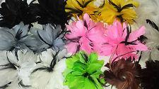 Joblot 36 pcs Feather  Fascinator NEW wholesale