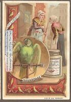 Parrot Represents Mindless Chattering Perroquet c1900 Trade Ad Card