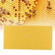 Plastic Beekeeping Frame With Comb Beekeeper Beekeeping Equipment