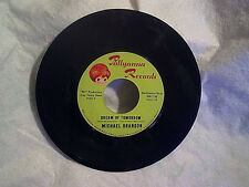 MICHAEL BRANDON-Drinking Up The Wine,Dream Of Tomorrow,pollyanna p 101,garage 45