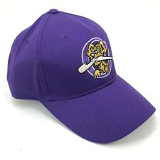 Charleston RiverDogs Youth Adult Sizes Outdoor Cap Adjustable Hat Purple Logo