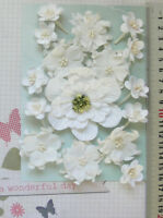 WHITE Magnolia, Apple & Cherry Blossoms - 16 Flowers - PAPER 25-75mm GT Draw A