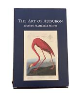 "The Art Of Audubon  Birds Of America 13 Of 16 Art Prints 10"" x 15"" John James"
