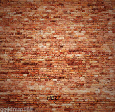 10X10FT Red Brick Wall Backdrop Photo Prop Studio Background Photography HB21
