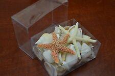50+ PCS ASSORT WHITE SEA SHELL WITH STARFISH BEACH WEDDING DECOR BOX #7633A